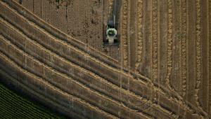 Zbiory czerwonej pszenicy w Kirkland w stanie Illinois w USA