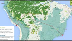 Jedna z planowanych tras przebigu linii kolejowej (fot. Global Forest Watch)