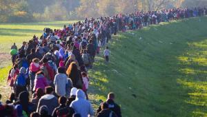 Imigranci Fot. Janossy Gergely / Shutterstock.com