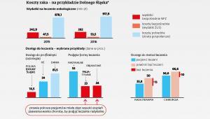 Koszty leczenia raka na przykładzie Dolnego Śląska