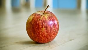 Jabłko, fot. mescon, źródło: Flickr.com, licencja Creative Commons (CC BY 2.0)