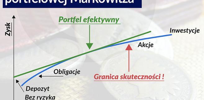 Portfel efektywny, Infografika: Bogusław Rzepczak